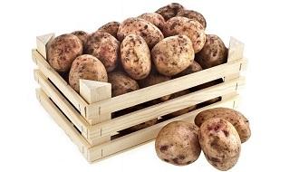 фото: как хранить картофель зимой