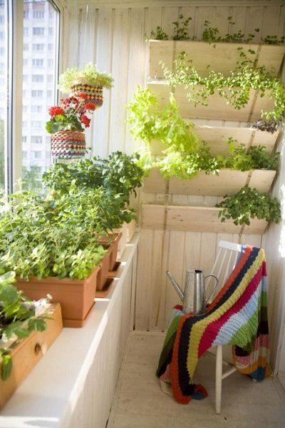 фото: мини огород на балконе