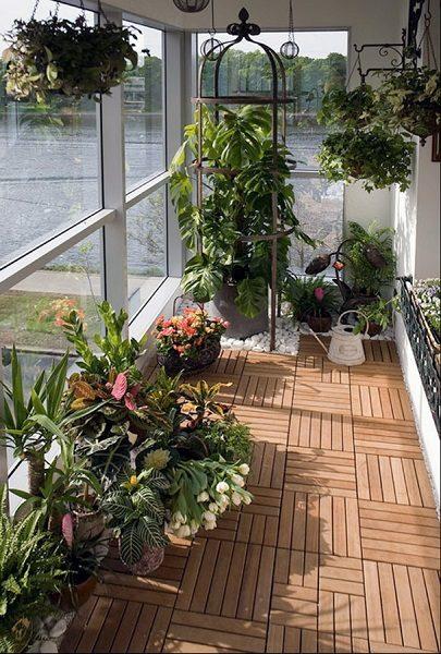 фото: зимний сад на панорамном балконе