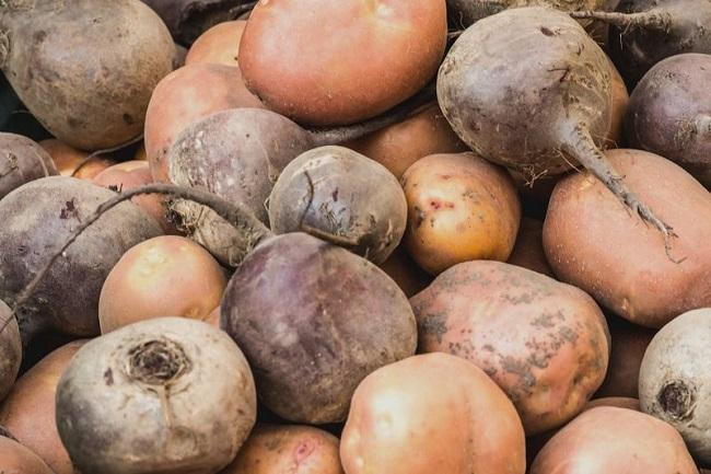 хранение картофеля со свеклой
