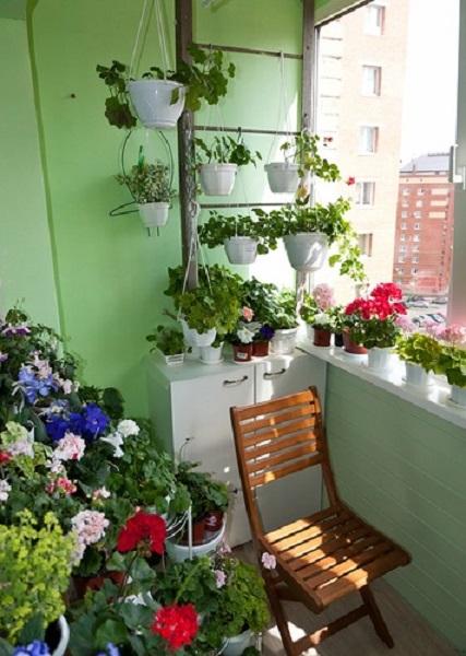 пожарная лестница вместо этажерки для комнатных растений на балконе