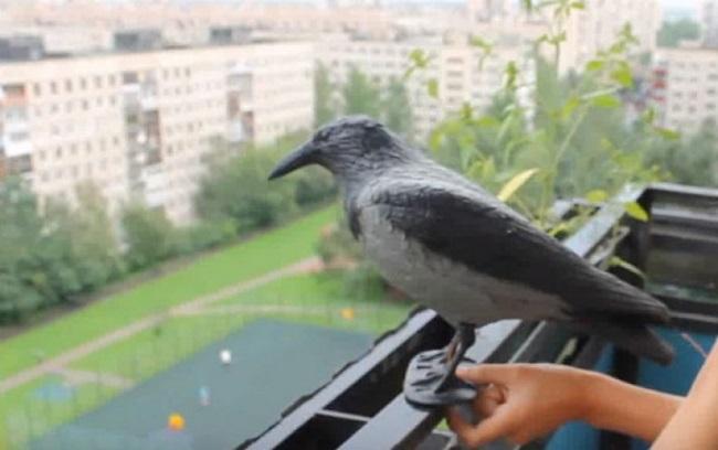 чучело вороны на балконе от голубей